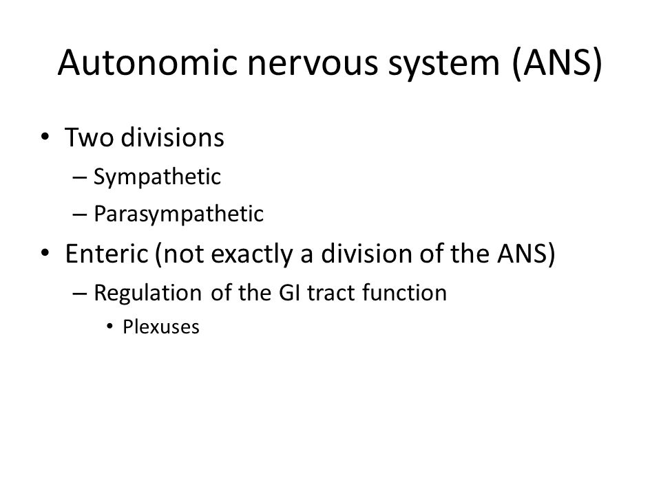 Neurotransmitters Classes – Acetylchorine – Biogenic amines – Amino acids – Purines – Neuropeptides – Gases
