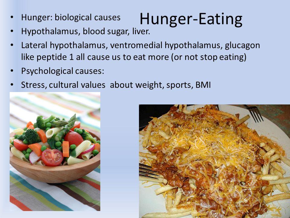Hunger-Eating Hunger: biological causes Hypothalamus, blood sugar, liver. Lateral hypothalamus, ventromedial hypothalamus, glucagon like peptide 1 all