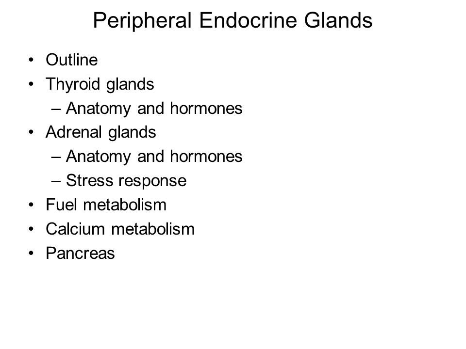 Peripheral Endocrine Glands Outline Thyroid glands –Anatomy and hormones Adrenal glands –Anatomy and hormones –Stress response Fuel metabolism Calcium metabolism Pancreas
