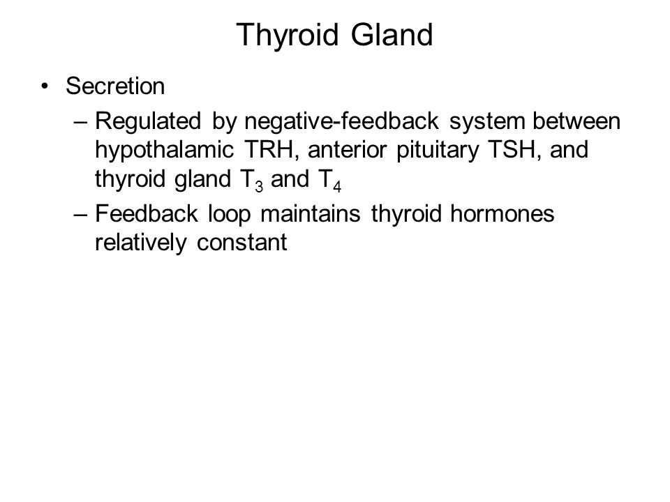 Thyroid Gland Secretion –Regulated by negative-feedback system between hypothalamic TRH, anterior pituitary TSH, and thyroid gland T 3 and T 4 –Feedback loop maintains thyroid hormones relatively constant