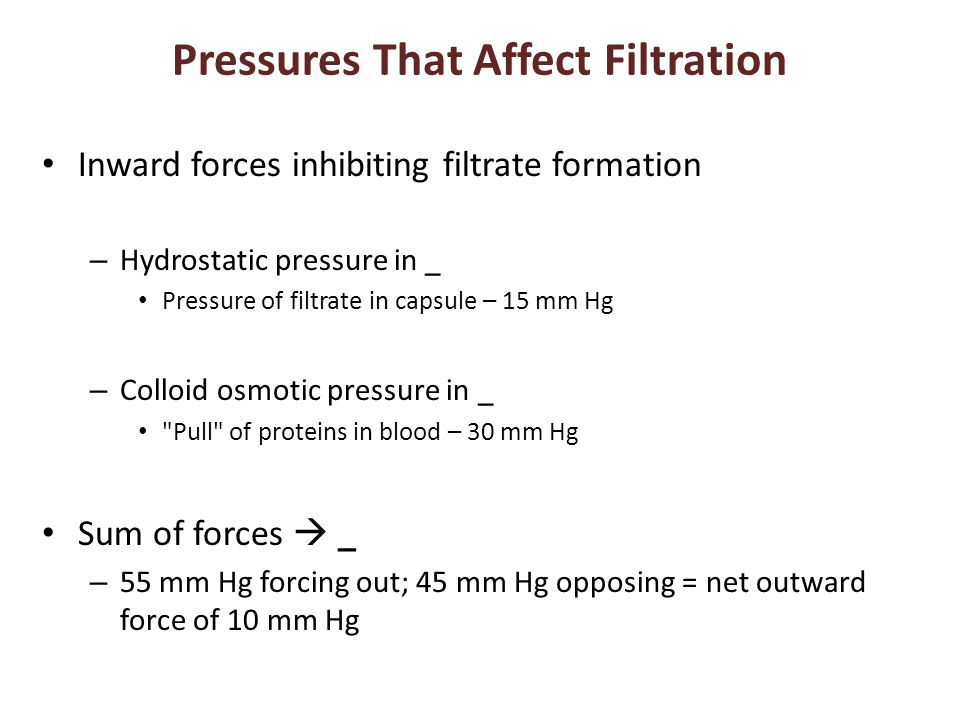 Pressures That Affect Filtration Inward forces inhibiting filtrate formation – Hydrostatic pressure in _ Pressure of filtrate in capsule – 15 mm Hg – Colloid osmotic pressure in _ Pull of proteins in blood – 30 mm Hg Sum of forces  _ – 55 mm Hg forcing out; 45 mm Hg opposing = net outward force of 10 mm Hg