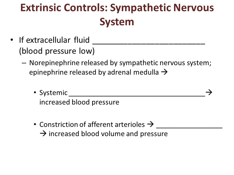 Extrinsic Controls: Sympathetic Nervous System If extracellular fluid _________________________ (blood pressure low) – Norepinephrine released by sympathetic nervous system; epinephrine released by adrenal medulla  Systemic ___________________________________  increased blood pressure Constriction of afferent arterioles  _________________  increased blood volume and pressure