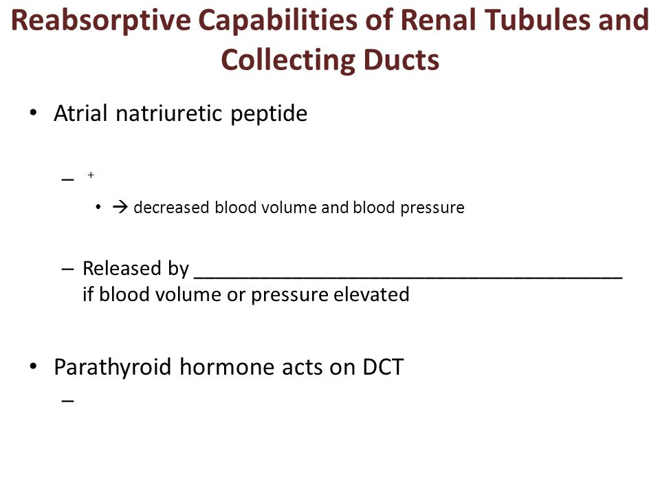 Reabsorptive Capabilities of Renal Tubules and Collecting Ducts Atrial natriuretic peptide – +  decreased blood volume and blood pressure – Released