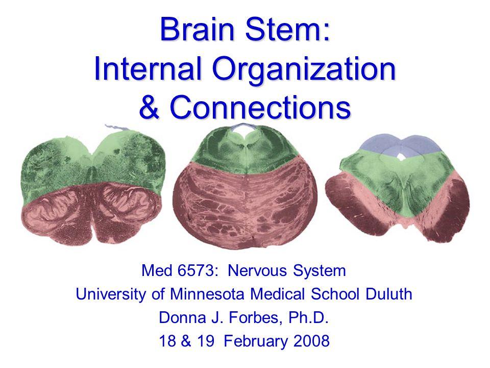 Brain Stem: Internal Organization & Connections Med 6573: Nervous System University of Minnesota Medical School Duluth Donna J.