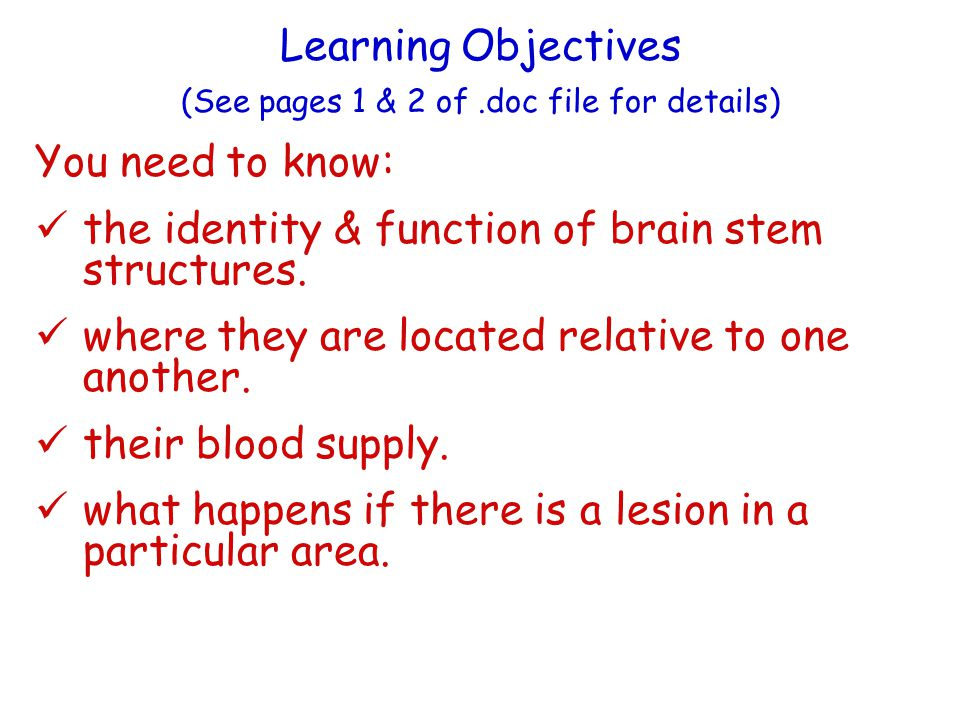 Learning Objectives (See pages 1 & 2 of.doc file for details) You need to know: the identity & function of brain stem structures.
