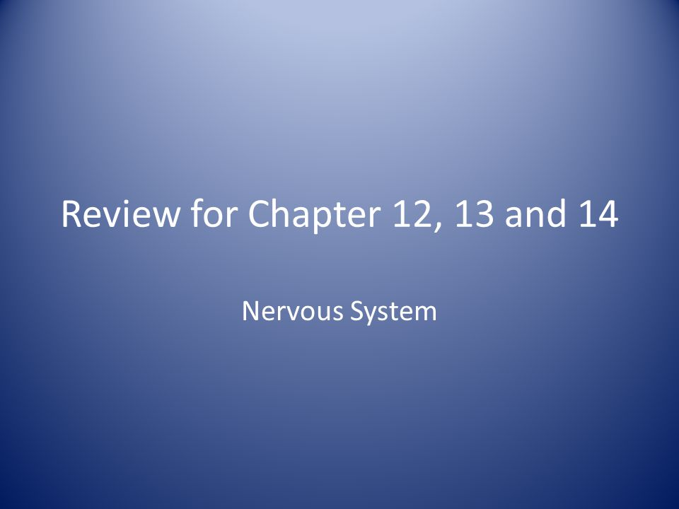 Review for Chapter 12, 13 and 14 Nervous System