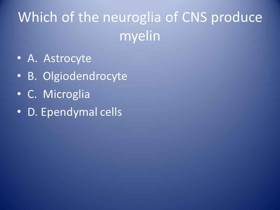 Which of the neuroglia of CNS produce myelin A. Astrocyte B. Olgiodendrocyte C. Microglia D. Ependymal cells