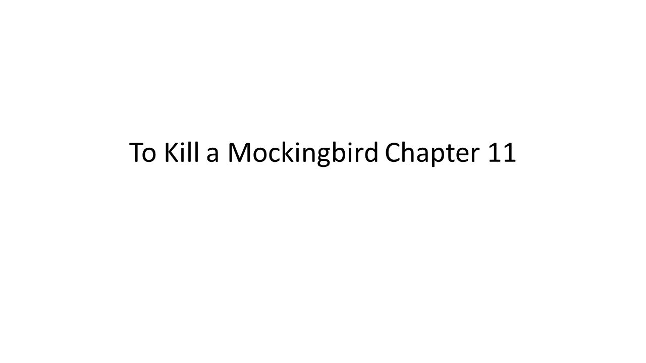 To Kill a Mockingbird Chapter 11