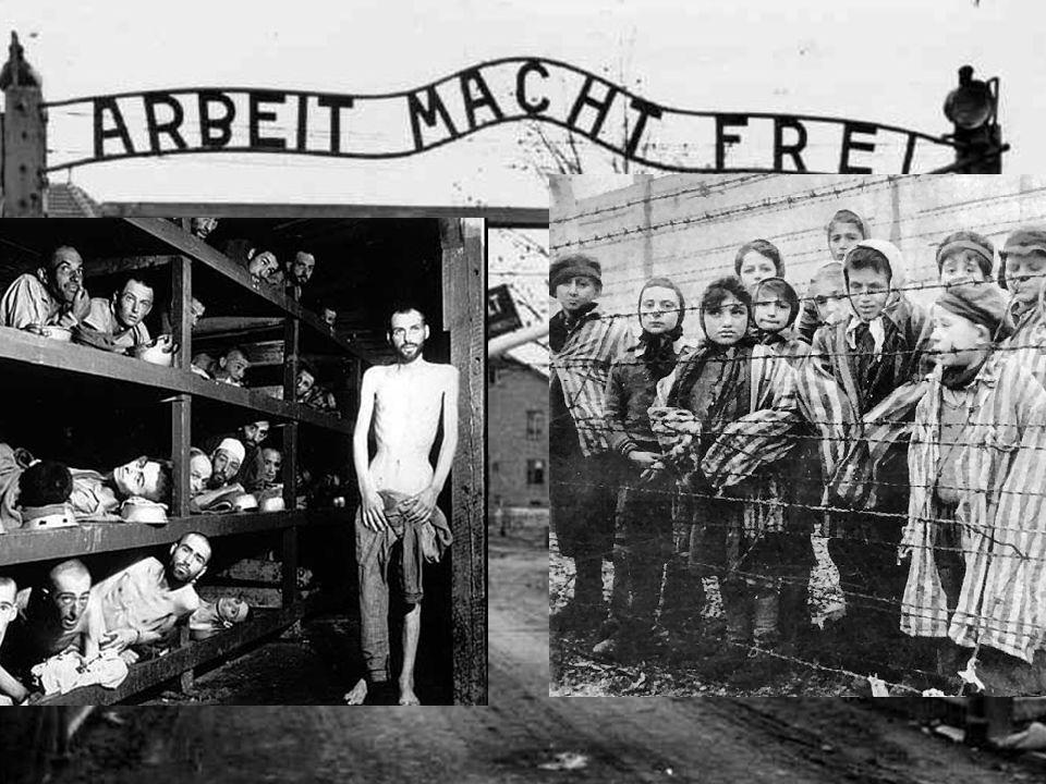 The Holocaust During World War II (1939-1945), Nazi Germany killed 6 million Jews