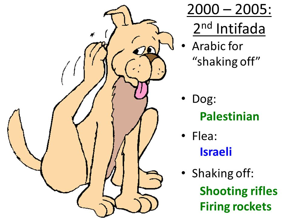 Arabic for shaking off Dog: Flea: Shaking off: Palestinian Israeli Throwing stones 1987-1993: 1 st Intifada
