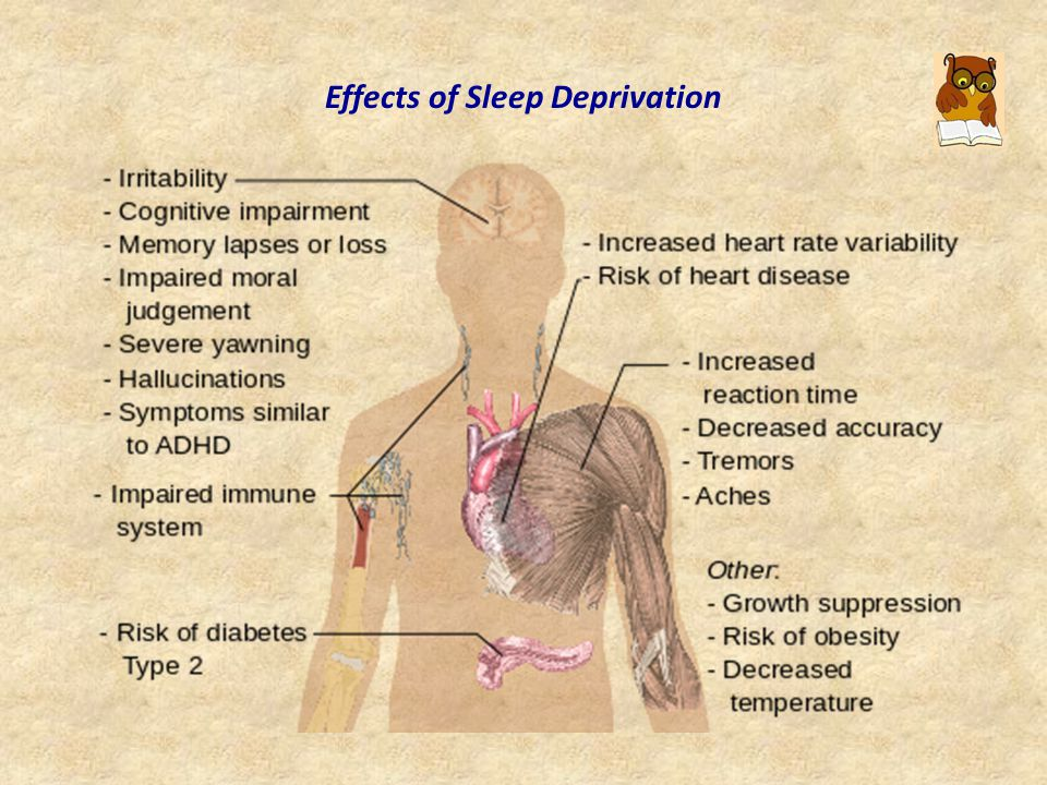Optimal Amount of Sleep A person s major sleep episode is relatively inefficient and inadequate when it occurs at the wrong time of day; one should be asleep at least six hours before the lowest body temperature.