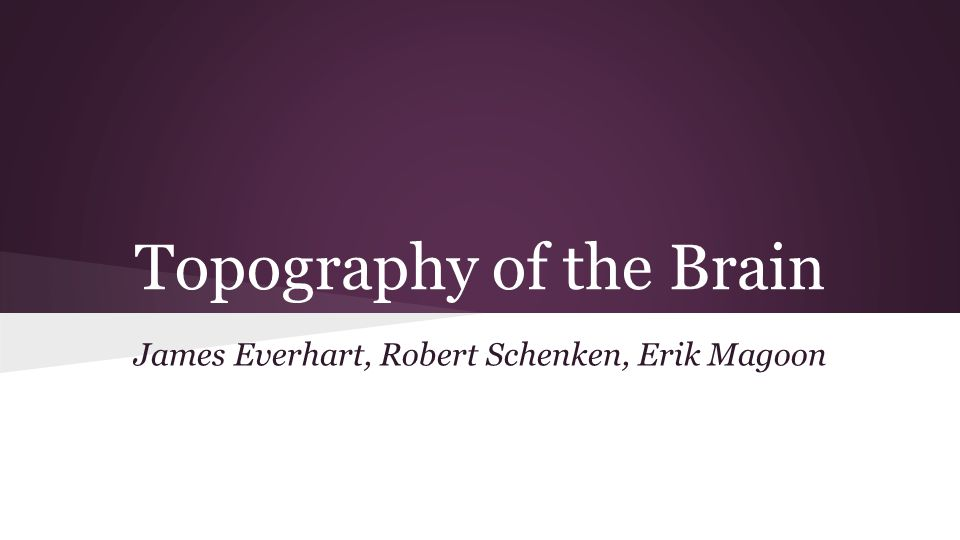 Topography of the Brain James Everhart, Robert Schenken, Erik Magoon