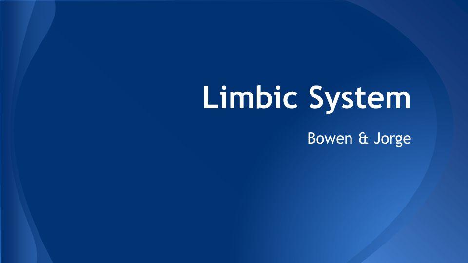 Limbic System Bowen & Jorge