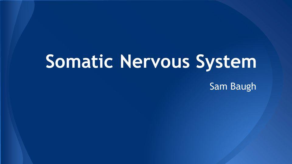 Somatic Nervous System Sam Baugh