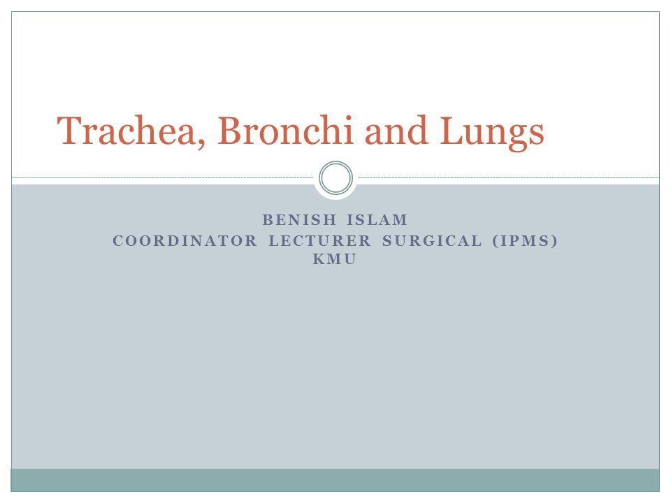 BENISH ISLAM COORDINATOR LECTURER SURGICAL (IPMS) KMU Trachea, Bronchi and Lungs