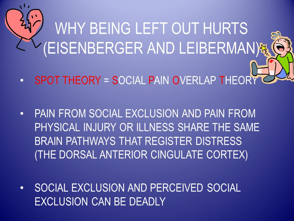 WHY BEING LEFT OUT HURTS (EISENBERGER AND LEIBERMAN) SPOT THEORY = SOCIAL PAIN OVERLAP THEORY PAIN FROM SOCIAL EXCLUSION AND PAIN FROM PHYSICAL INJURY OR ILLNESS SHARE THE SAME BRAIN PATHWAYS THAT REGISTER DISTRESS (THE DORSAL ANTERIOR CINGULATE CORTEX) SOCIAL EXCLUSION AND PERCEIVED SOCIAL EXCLUSION CAN BE DEADLY