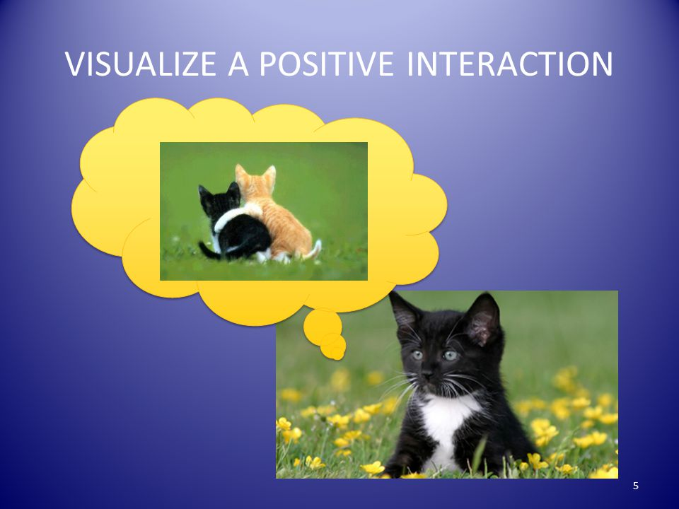 VISUALIZE A POSITIVE INTERACTION 5