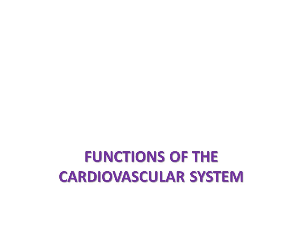 Cardiovascular Center Input