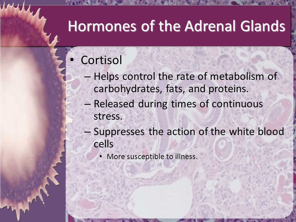 Hormones of the Adrenal Glands Cortisol – Helps control the rate of metabolism of carbohydrates, fats, and proteins. – Released during times of contin