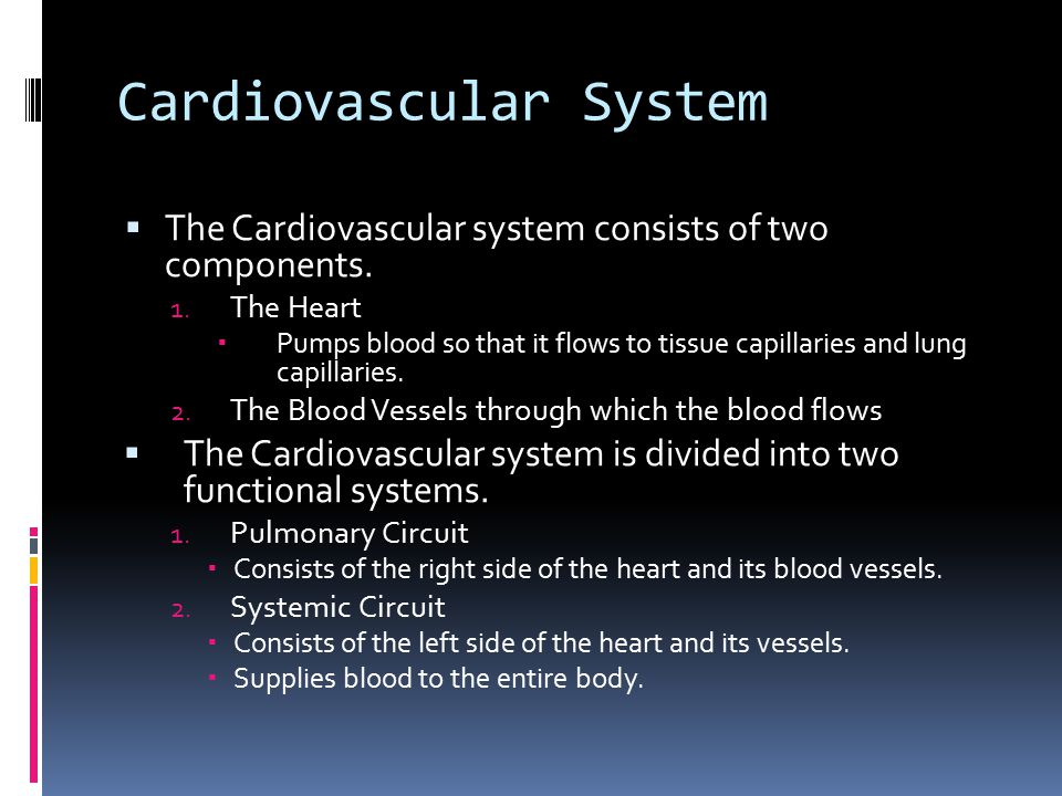 Cardiovascular System  The Cardiovascular system consists of two components. 1. The Heart  Pumps blood so that it flows to tissue capillaries and lu