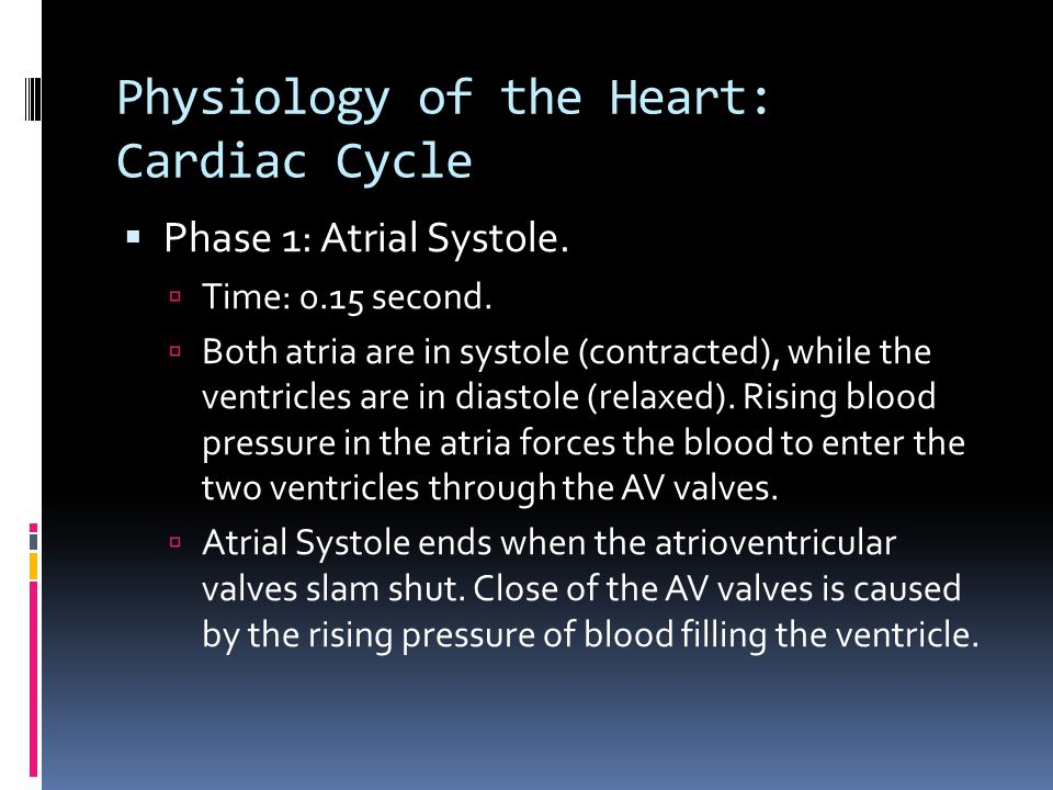 Physiology of the Heart: Cardiac Cycle  Phase 1: Atrial Systole.  Time: 0.15 second.  Both atria are in systole (contracted), while the ventricles