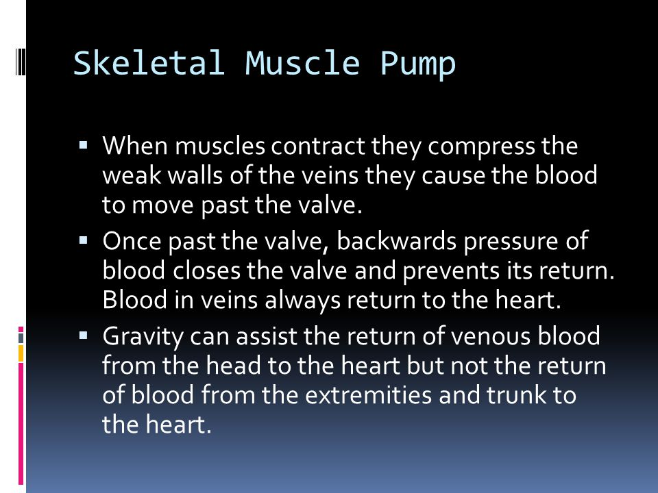 Skeletal Muscle Pump  When muscles contract they compress the weak walls of the veins they cause the blood to move past the valve.  Once past the va