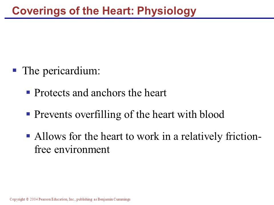 Copyright © 2004 Pearson Education, Inc., publishing as Benjamin Cummings Regulation of Heart Rate  Positive chronotropic factors increase heart rate  Negative chronotropic factors decrease heart rate