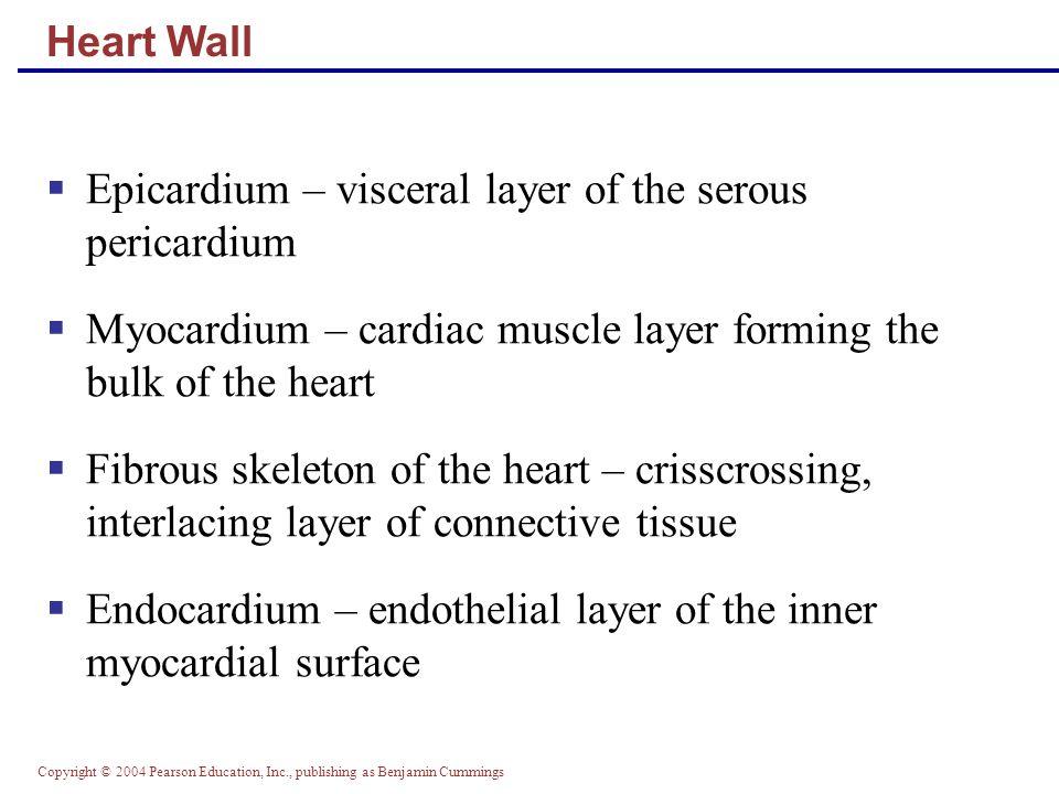 Copyright © 2004 Pearson Education, Inc., publishing as Benjamin Cummings Cardiac Output: Example  CO (ml/min) = HR (75 beats/min) x SV (70 ml/beat)  CO = 5250 ml/min (5.25 L/min)