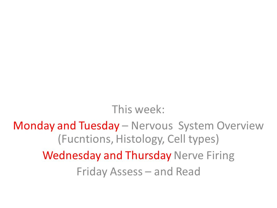 This week: Monday and Tuesday – Nervous System Overview (Fucntions, Histology, Cell types) Wednesday and Thursday Nerve Firing Friday Assess – and Rea