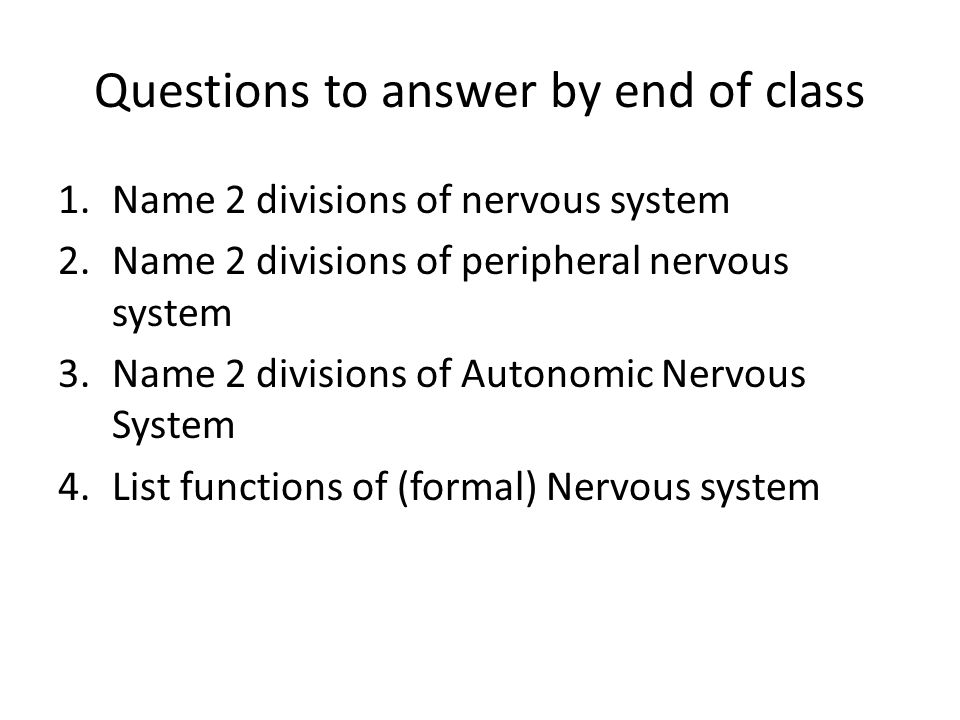 Questions to answer by end of class 1.Name 2 divisions of nervous system 2.Name 2 divisions of peripheral nervous system 3.Name 2 divisions of Autonom