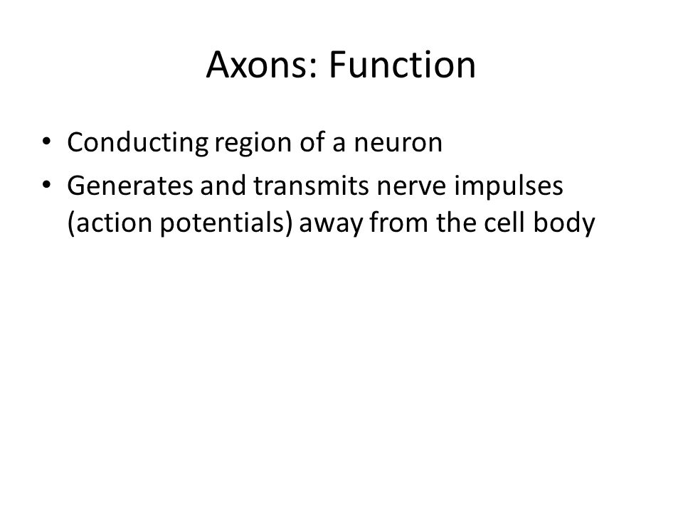 Axons: Function Conducting region of a neuron Generates and transmits nerve impulses (action potentials) away from the cell body