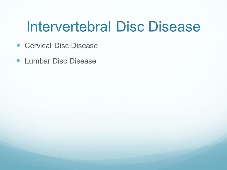 Intervertebral Disc Disease Cervical Disc Disease Lumbar Disc Disease