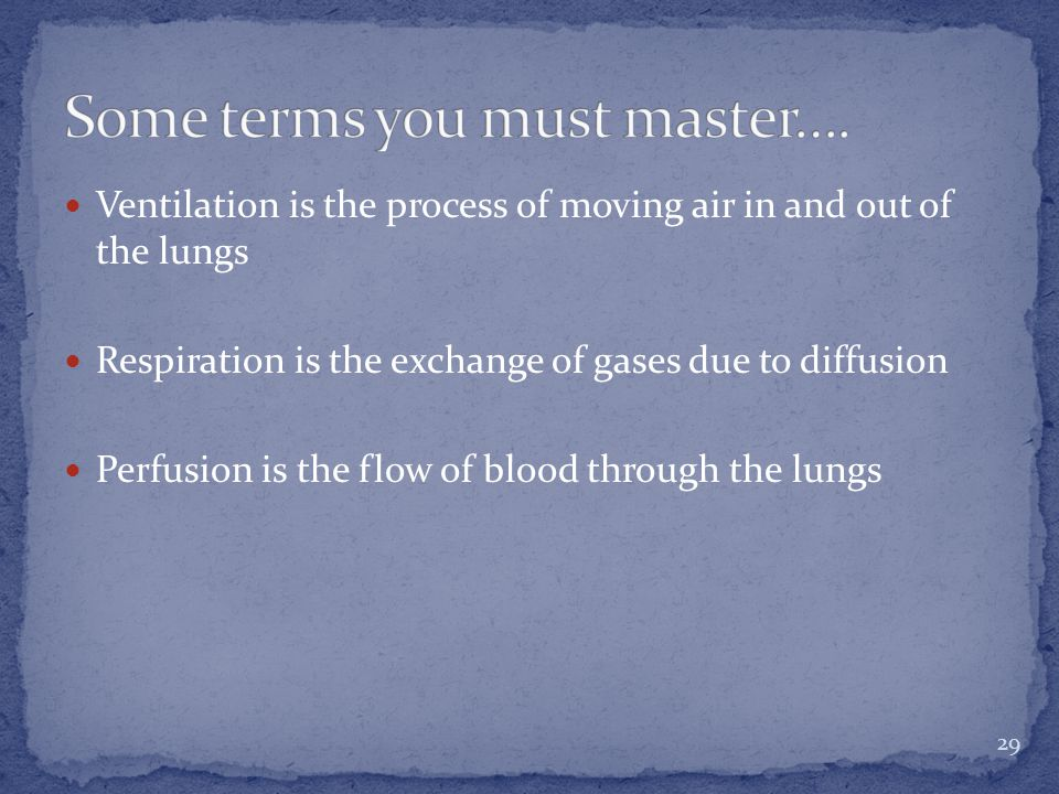 Ventilation is the process of moving air in and out of the lungs Respiration is the exchange of gases due to diffusion Perfusion is the flow of blood through the lungs 29