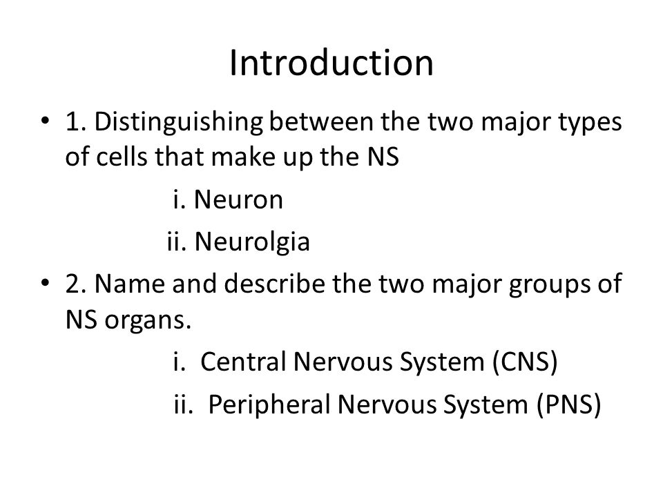 Introduction 1. Distinguishing between the two major types of cells that make up the NS i.