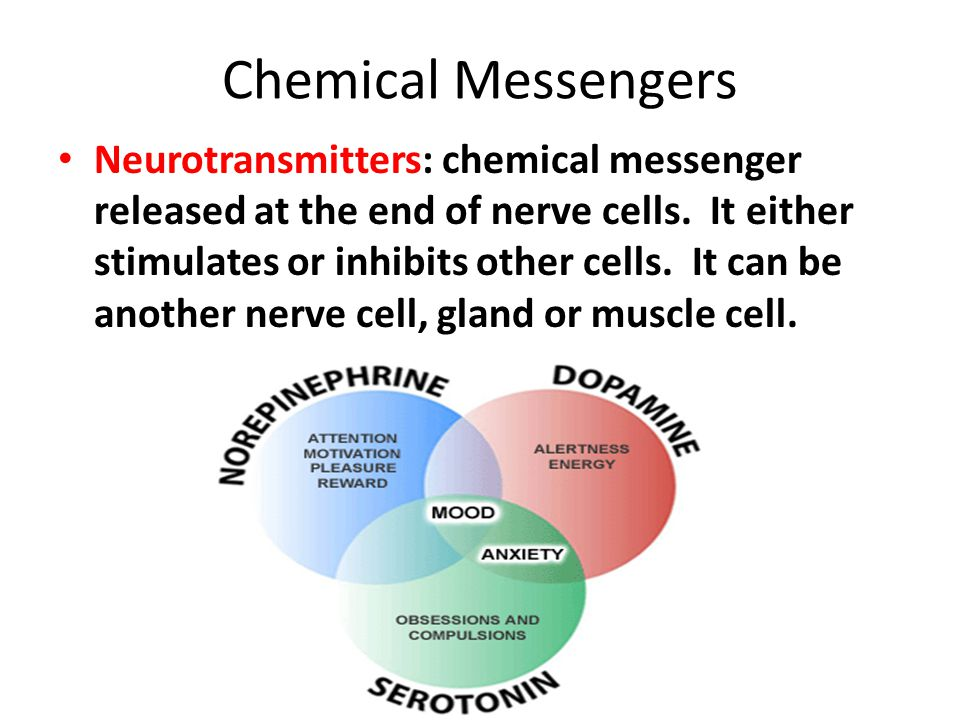 Chemical Messengers Neurotransmitters: chemical messenger released at the end of nerve cells.
