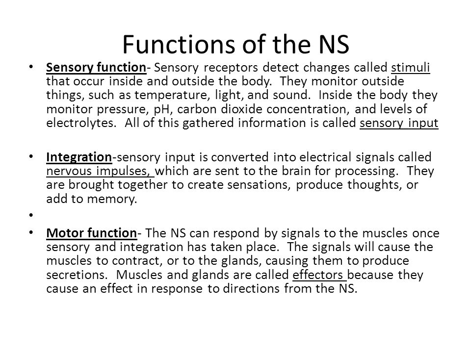 There are 2 major components the PNS and CNS