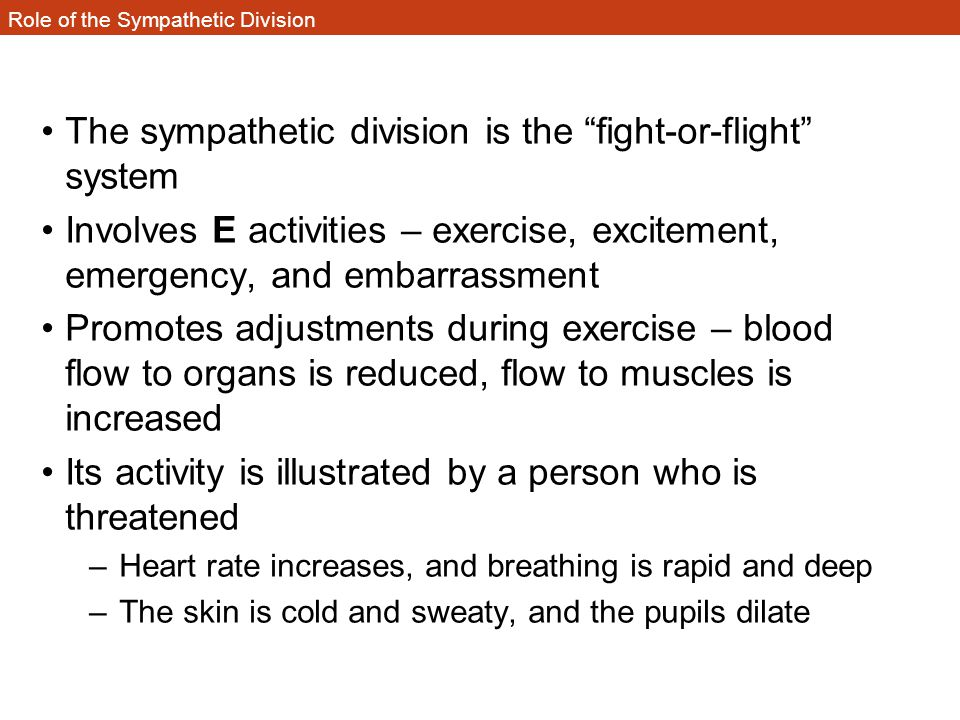 "Role of the Sympathetic Division The sympathetic division is the ""fight-or-flight"" system Involves E activities – exercise, excitement, emergency, and"