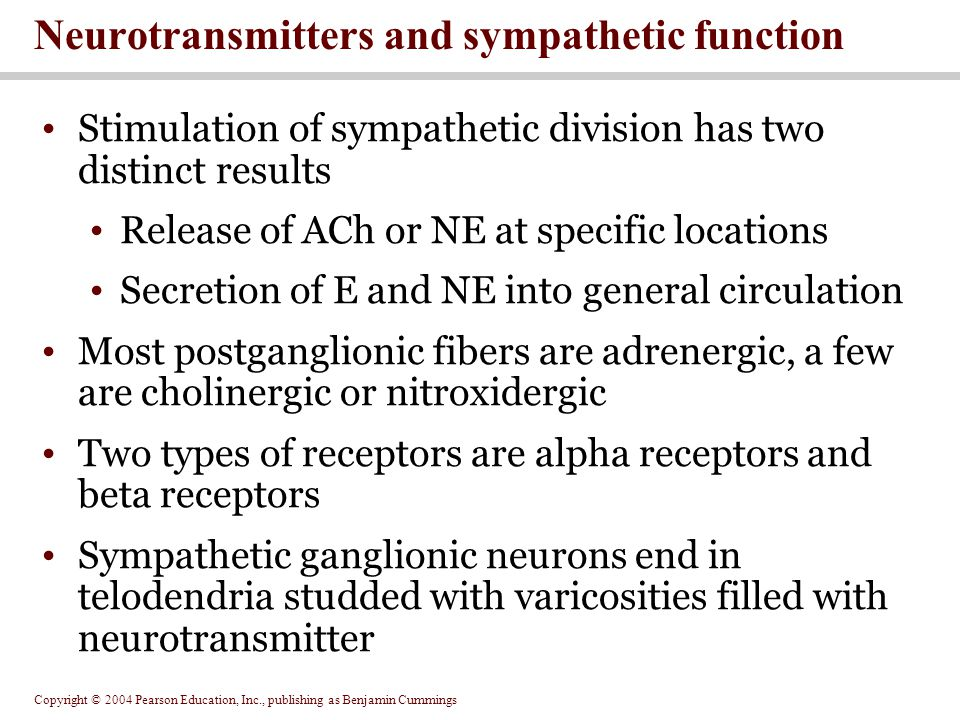 Copyright © 2004 Pearson Education, Inc., publishing as Benjamin Cummings Stimulation of sympathetic division has two distinct results Release of ACh or NE at specific locations Secretion of E and NE into general circulation Most postganglionic fibers are adrenergic, a few are cholinergic or nitroxidergic Two types of receptors are alpha receptors and beta receptors Sympathetic ganglionic neurons end in telodendria studded with varicosities filled with neurotransmitter Neurotransmitters and sympathetic function