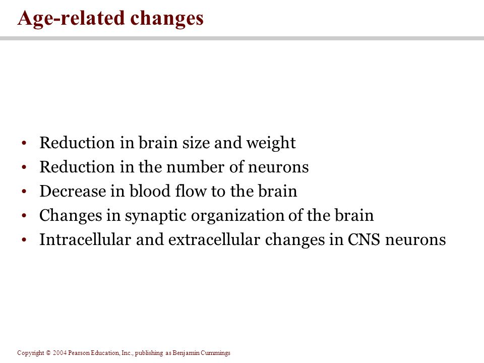 Copyright © 2004 Pearson Education, Inc., publishing as Benjamin Cummings Reduction in brain size and weight Reduction in the number of neurons Decrease in blood flow to the brain Changes in synaptic organization of the brain Intracellular and extracellular changes in CNS neurons Age-related changes