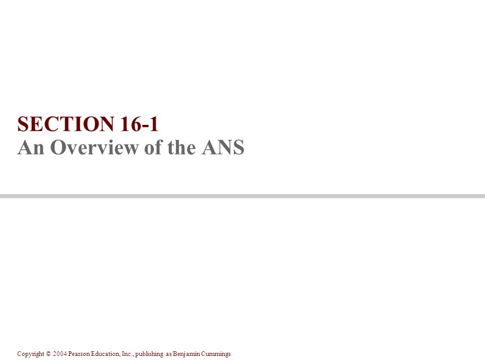 Copyright © 2004 Pearson Education, Inc., publishing as Benjamin Cummings SECTION 16-1 An Overview of the ANS