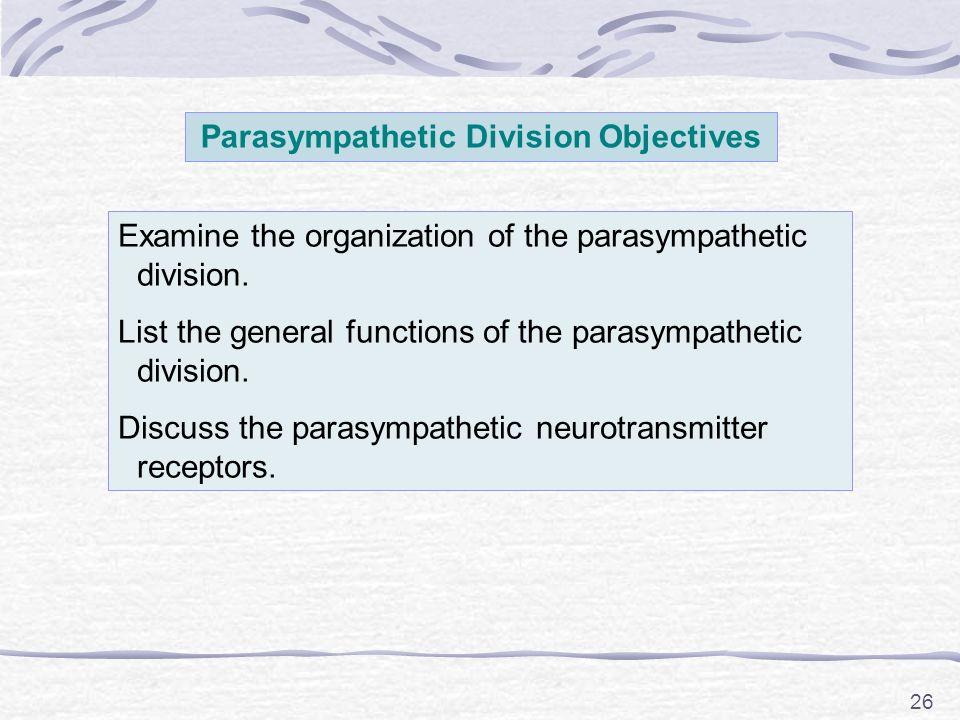 26 Parasympathetic Division Objectives Examine the organization of the parasympathetic division.