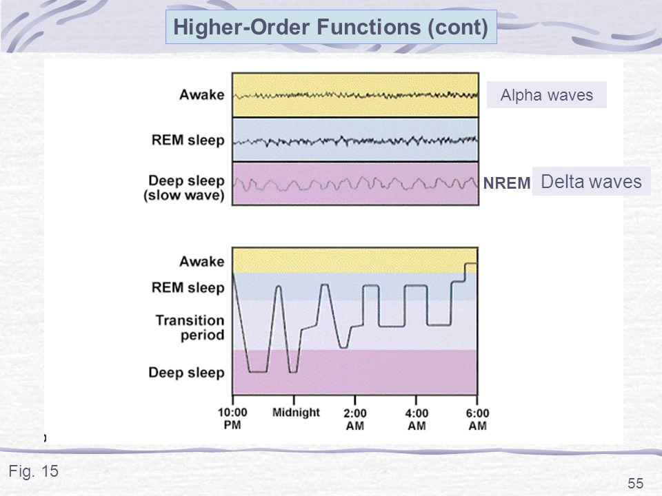 55 Alpha waves NREM Higher-Order Functions (cont) Delta waves Fig. 15