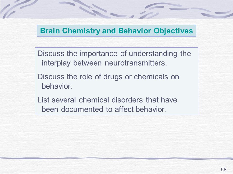 58 Brain Chemistry and Behavior Objectives Discuss the importance of understanding the interplay between neurotransmitters. Discuss the role of drugs