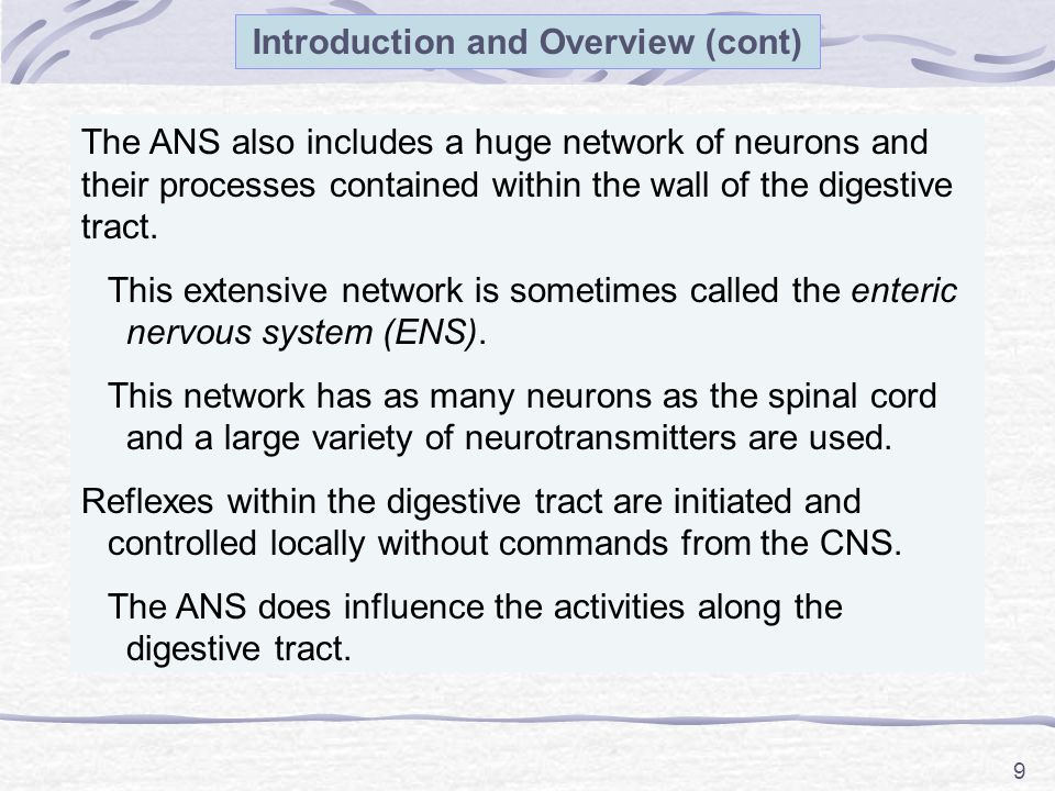 9 Introduction and Overview (cont) The ANS also includes a huge network of neurons and their processes contained within the wall of the digestive tract.