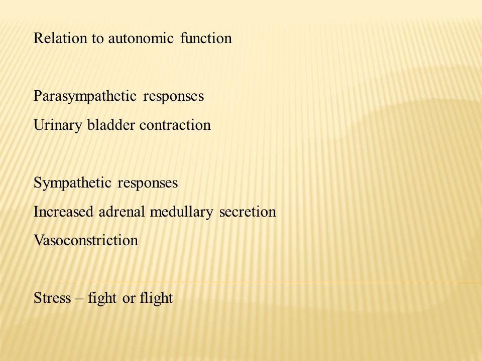 Relation to autonomic function Parasympathetic responses Urinary bladder contraction Sympathetic responses Increased adrenal medullary secretion Vasoc