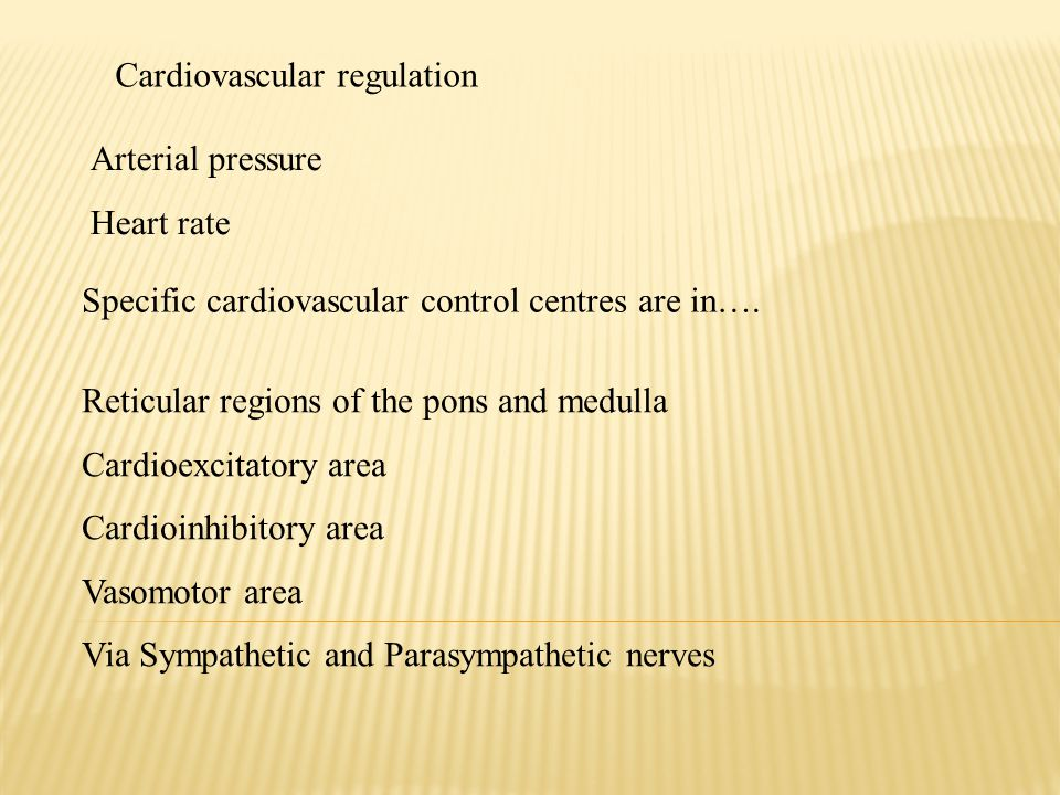 Cardiovascular regulation Arterial pressure Heart rate Specific cardiovascular control centres are in….
