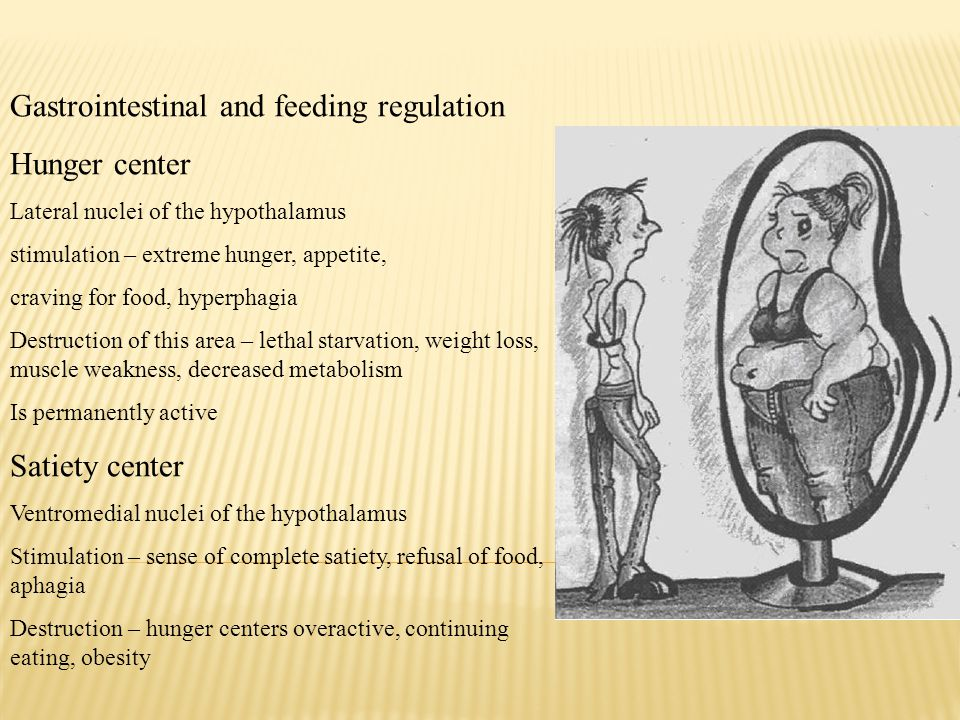 Gastrointestinal and feeding regulation Hunger center Lateral nuclei of the hypothalamus stimulation – extreme hunger, appetite, craving for food, hyp