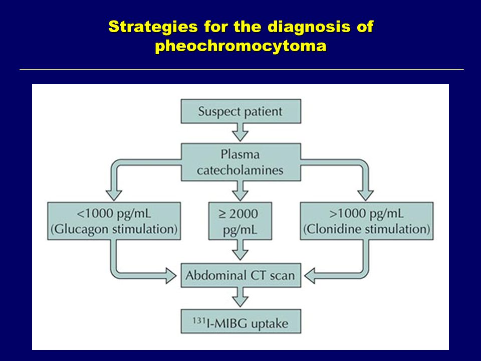 Strategies for the diagnosis of pheochromocytoma
