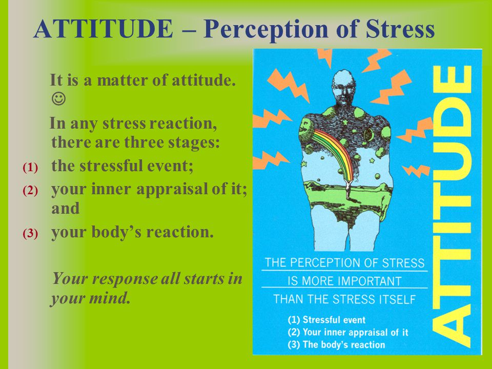 ATTITUDE – Perception of Stress It is a matter of attitude.