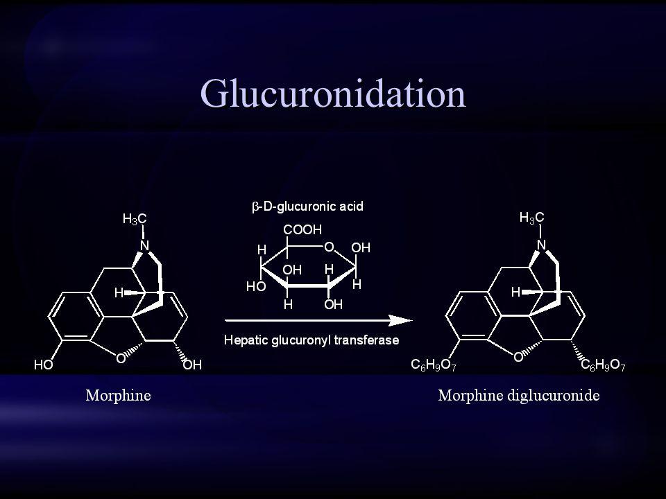 Glucuronidation